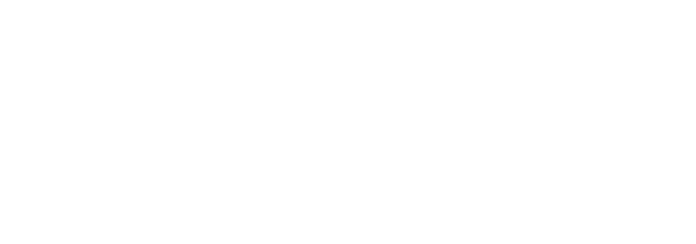 NN_logo_horizontal_white2